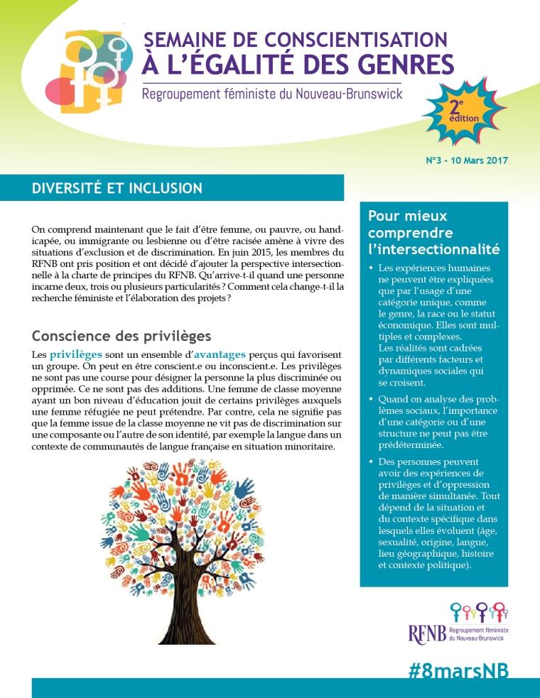 10mars_Diversité_inclusion_2017_RFNB1